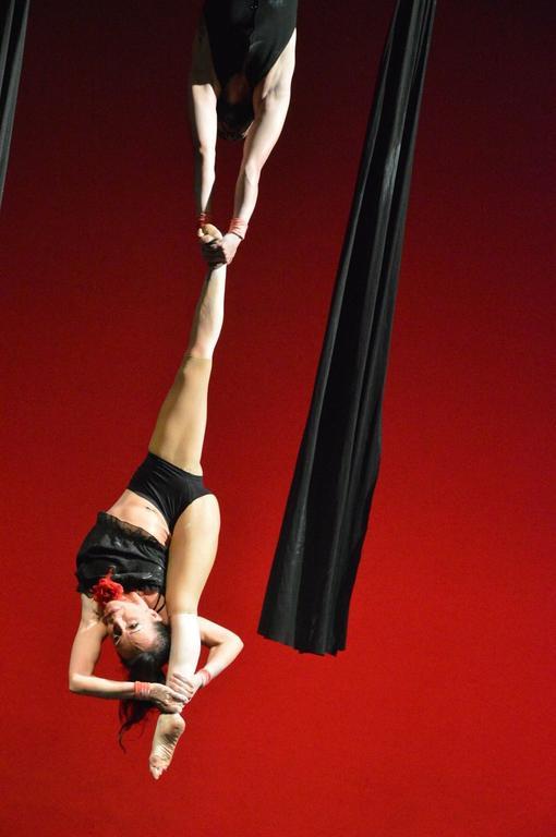 Francesca Simonetti, Danza aerea