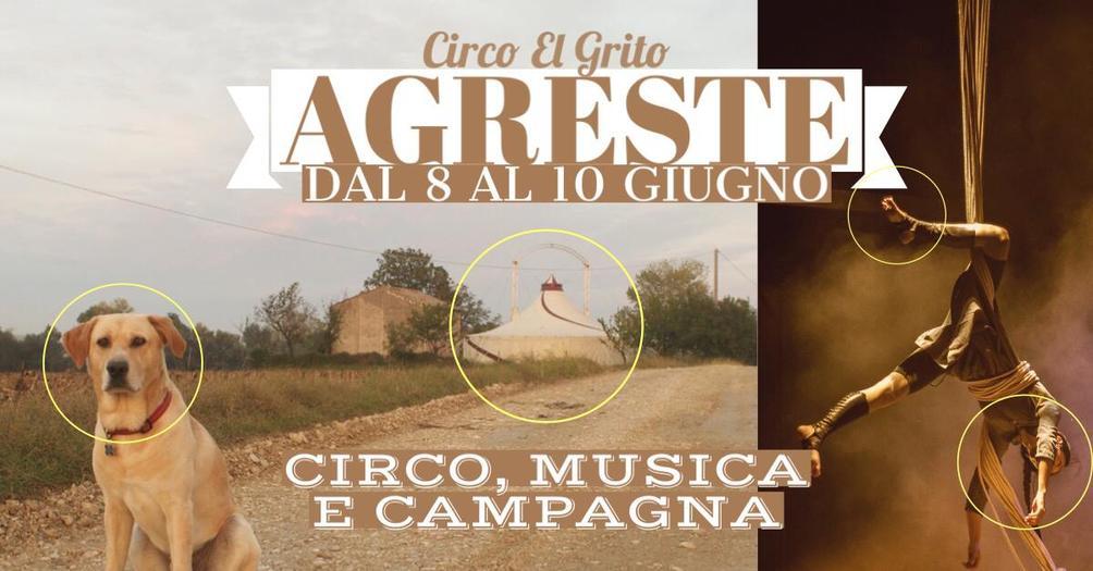 Opening in Agreste - Circo Contemporaneo, Musica e Campagna